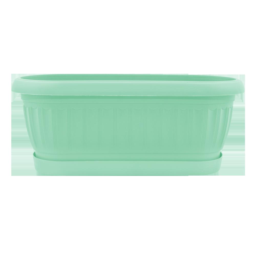 terra_kaktusovka_salat.png
